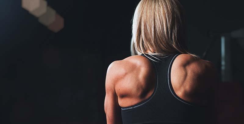 Principperne bag muskelvækst